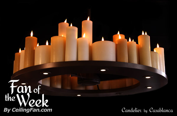 Candelier — Fan of the Week